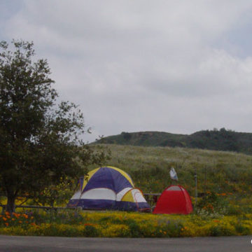 New State Park Camping Reservation System