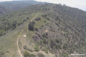 Madrona Drone Flyover