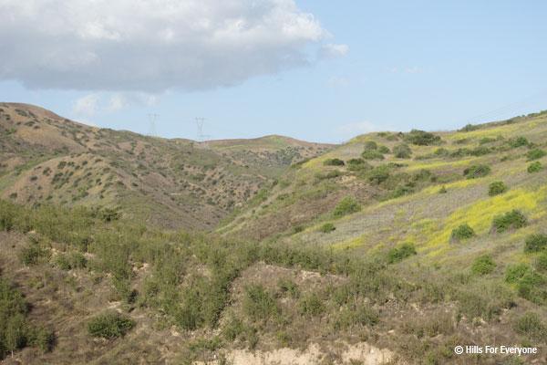 Esperanza Hills