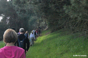 Sierra Club Hike - Skyline Trail