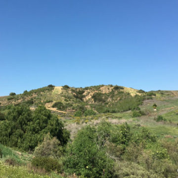 Cielo Vista Moves Forward, Esperanza Hills Refuses Board Recommendations