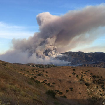 Wildfire Study Takes Off