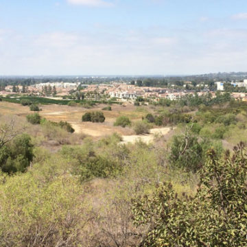 Houses Proposed by Aera in Brea