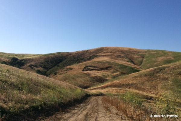 Park Trail Plan