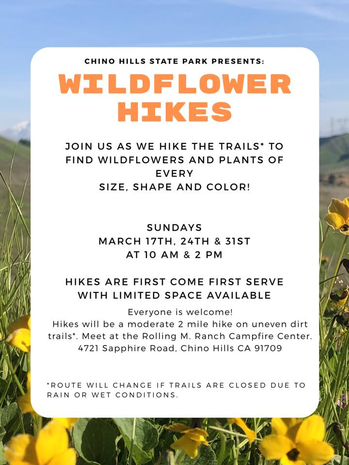 Wildflower Hike Flyer