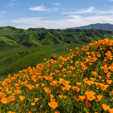 Chino Hills State Park Expansion Bill (AB 2021)