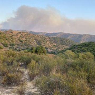 Blue Ridge Fire Ignites in YL