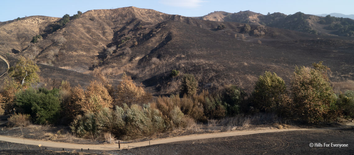Blue Ridge Fire