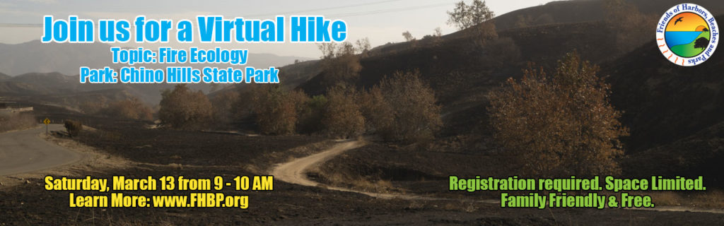 A charred landscape with an invitation to join a virtual hike in Chino Hills State Park on March 13th from 9 - 10 AM with a focus on Fire Ecology and registration links to: www.FHBP.org