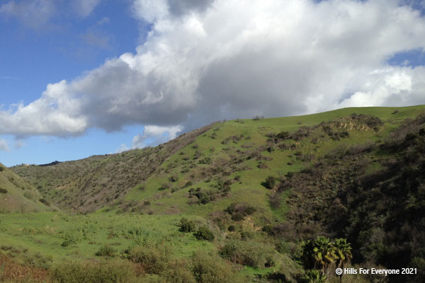 A steep hillside and sharp ridgeline with green and black vegetation rise sharply with a blue sky and puffy white clouds.