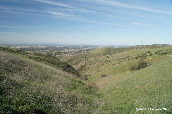 A light green with tan dead stalks on hillsides leading to a canyon and a city in the distance against blue skies with scattered clouds.